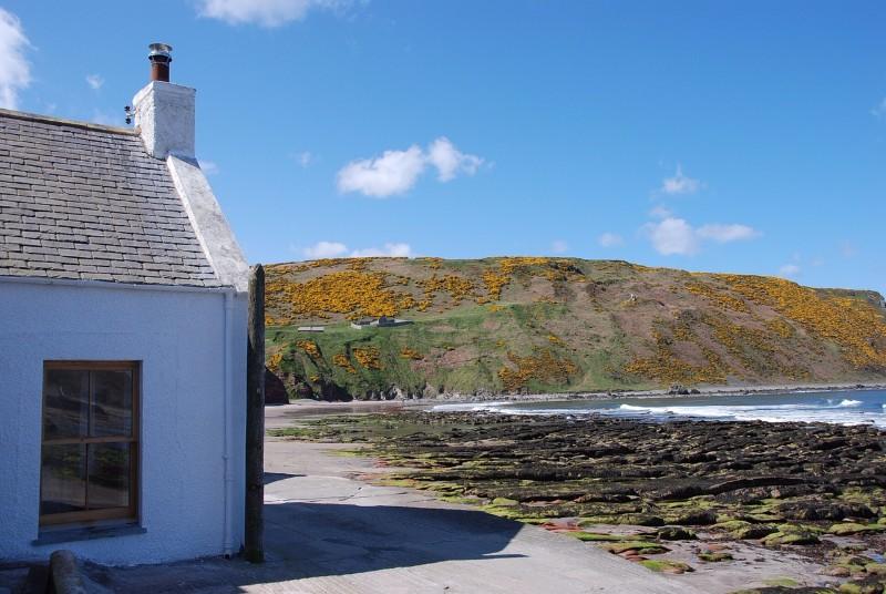 Gannet Cottage