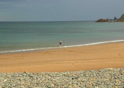 Beach - Ron Beaty